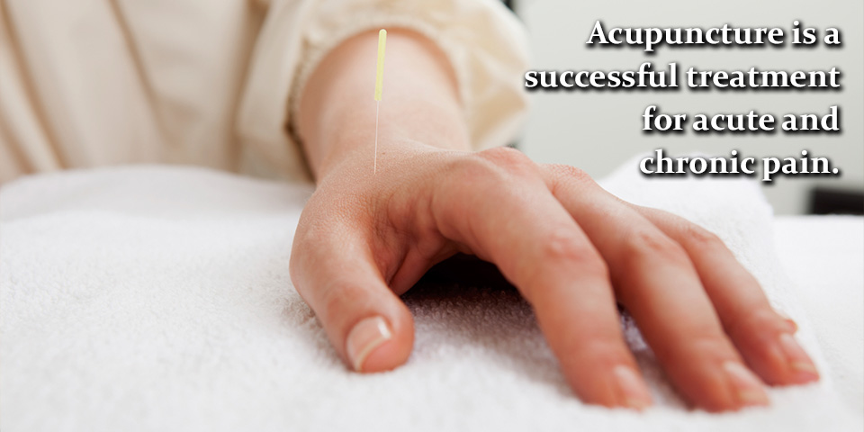 Portland Acupuncture is a successful treatment for acute and chronic pain.
