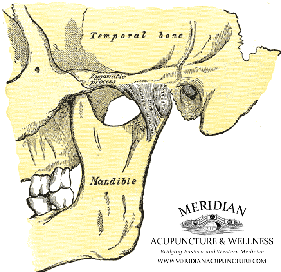 Portland Acupuncture for TMJ