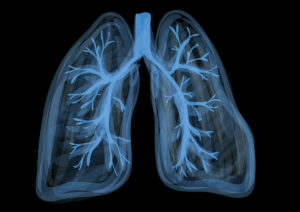 Holistic health treatment for symptoms connected to the lungs.